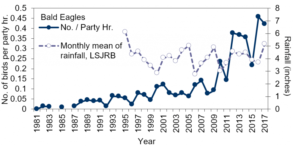 Line chart – long-term trend in the number of bald eagles counted per party hour and mean monthly rainfall (1981-2017) in Jacksonville, FL