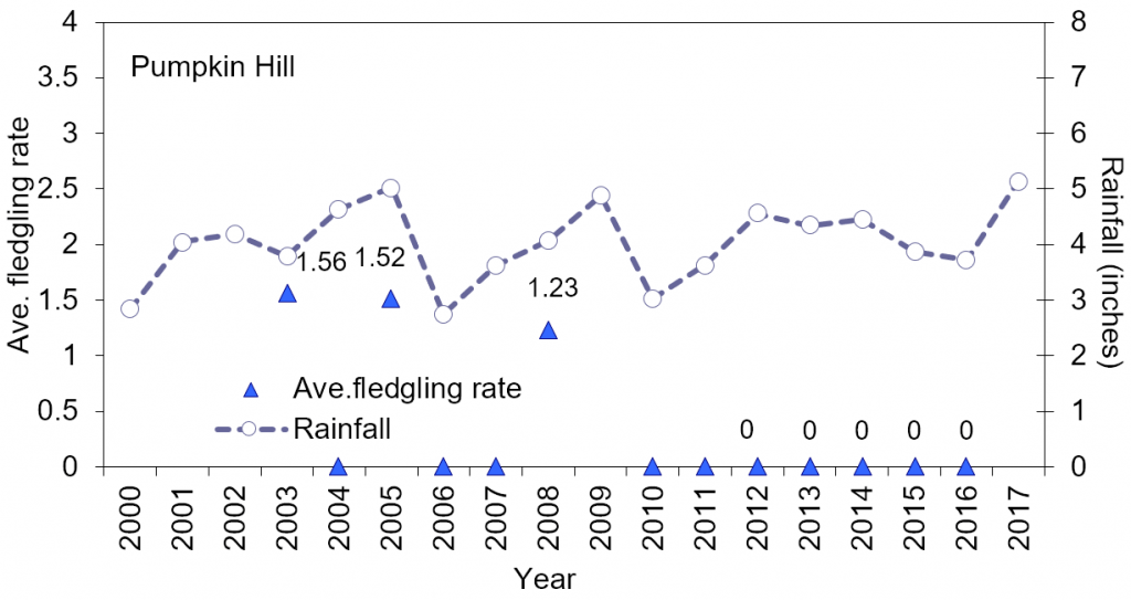 Line chart – wood stork productivity (chicks/nest/year) at Pumpkin Hill (2003-2016) and mean monthly rainfall. There are two colonies at this site, which is characterized by cypress-dominated domes. In 2004, the period 2006 to 2007, and from 2010-2016 no wood stork activity has been documented at this site (no data in 2017). In 2009, the colony was described as being active, but no data was available.