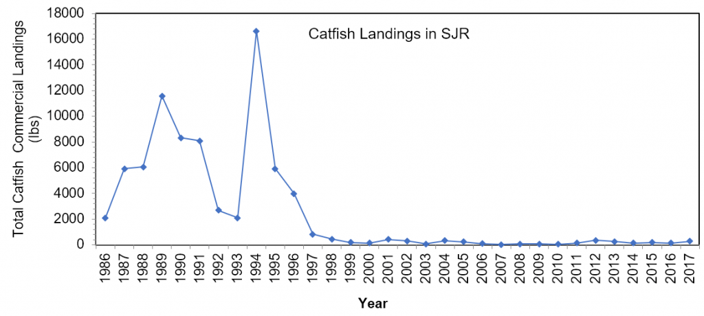 Figure 3.8 Commercial landings (in lbs) of catfish within the lower basin of the St. Johns River from 1986 to 2017. Note that the gill net ban went into effect in 1995 (FWRI 2019a).