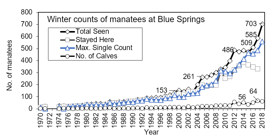 Figure 4.10 Winter counts of Florida manatees identified at the winter aggregation site in Blue Springs State Park, Volusia Co., FL 1970-2018. Maximum single day counts and animals that stayed at the site are also indicated (Data source: Hartley 2019).