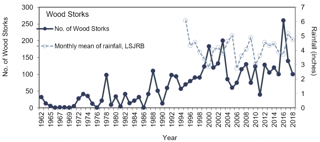 Figure 4.16 Long-term trend of the number of Wood Storks counted during winter bird surveys (1961-2018) and mean monthly rainfall in Jacksonville, FL (Source data: Audubon 2019; SJRWMD 2019a; Appendix 4.4.3.A).