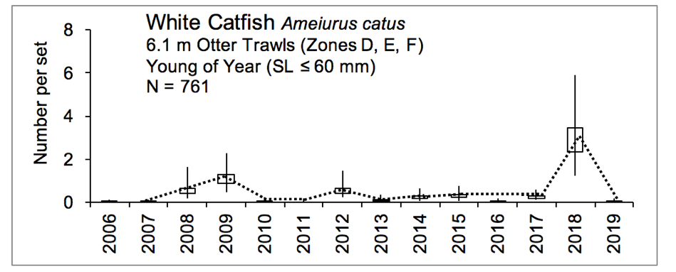 Figure 3.10 Number of young of year white catfish caught within the lower basin of the St. Johns River from 2006-2019. The N value indicates the total number of sets completed for the time period (FWRI 2020a). Young of year white catfish were sampled during a recruitment window from July to October with 6.1 m otter trawls that have a cod end with a mesh size of 3.2 mm (this