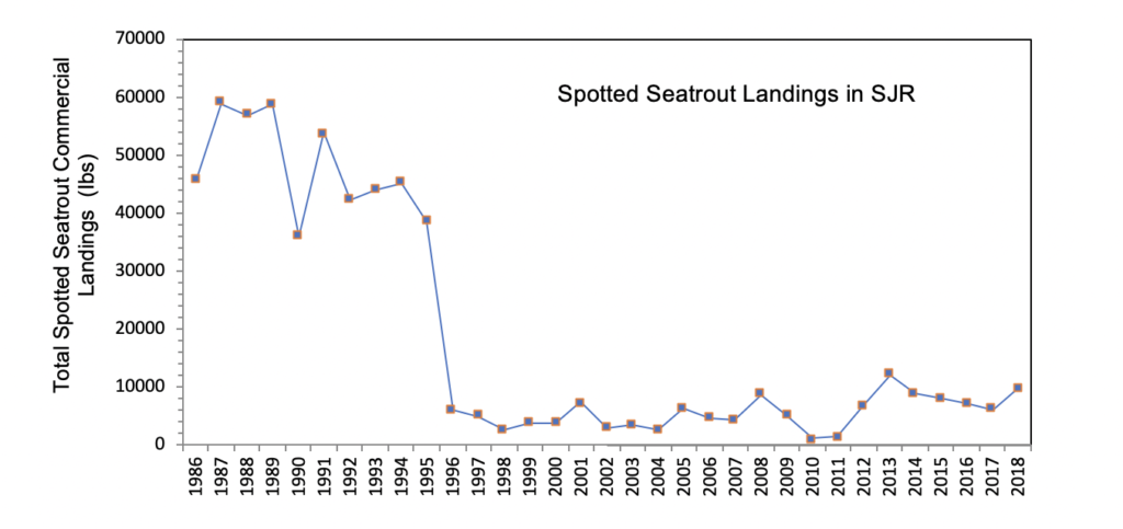 Figure 3.5 Commercial landings (in lbs) of spotted seatrout within the lower basin of the St. Johns River from 1986 to 2018. Note that gill nets were banned in 1995 (FWRI 2020a).
